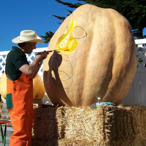 worlds record pumpkin